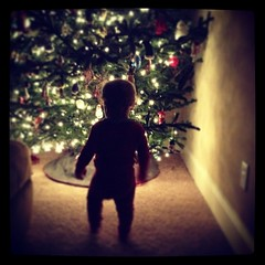 Got Christmas tree up and decorated. He is fascinated with the lights.