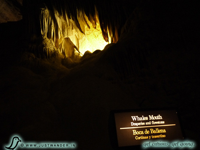 PIC: Whales Mouth of Carlsbad Caverns formed from draperies and flowstone.