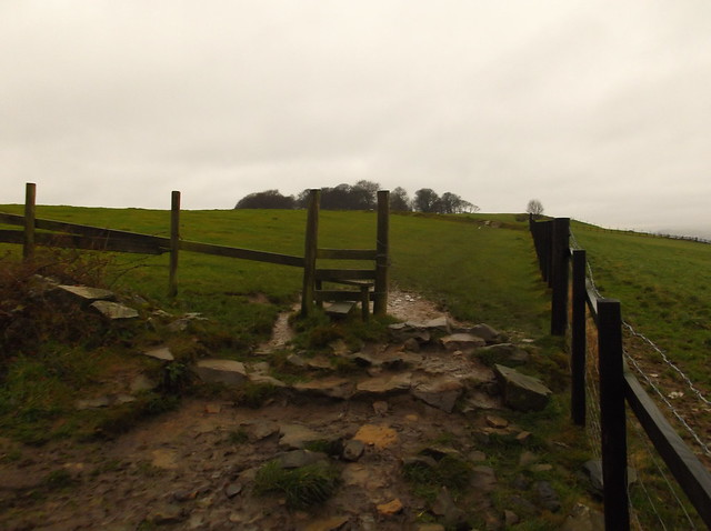 Horsforth and Rawdon circular 023
