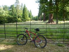 Cycle Trip to Pinewood Studios  30 Jun 2013