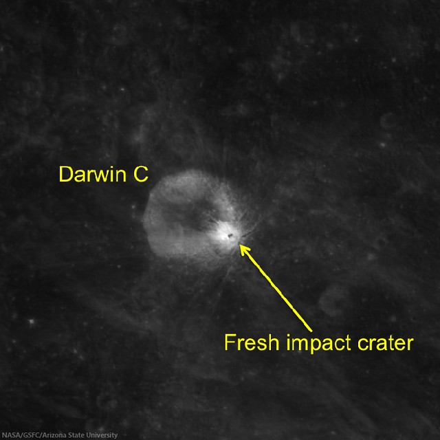 Albedo Optical Maturity of a fresh impact on the wall of Darwin C