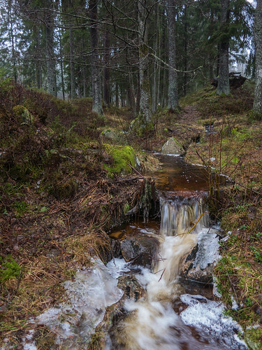 trees winter ice stream sweden isaberg