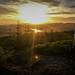 Balblair MTB Trails, Sunset Rider [Edited] by Anthony Round