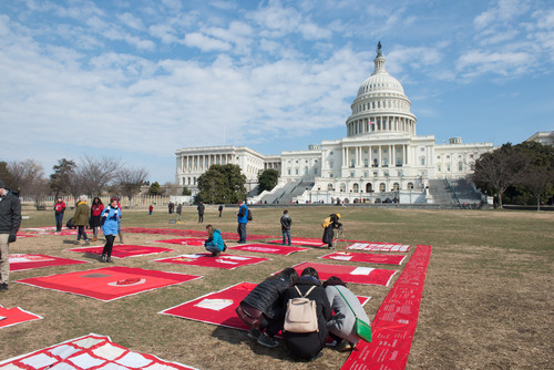 a large red quilt spreads out before the capitol