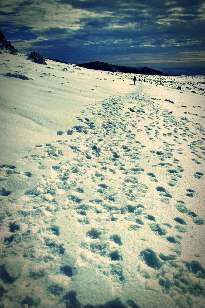 선작지왓-'한라산 영실코스 Hallasan youngsil trail'