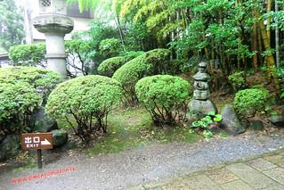 CIMG1232 Infierno Shirake Jigoku (Beppu) 13-07-2010 copia