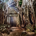 Amalgamation of Nature and the Temple of Ta Prohm by fesign