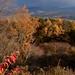 愛宕山からの紅葉