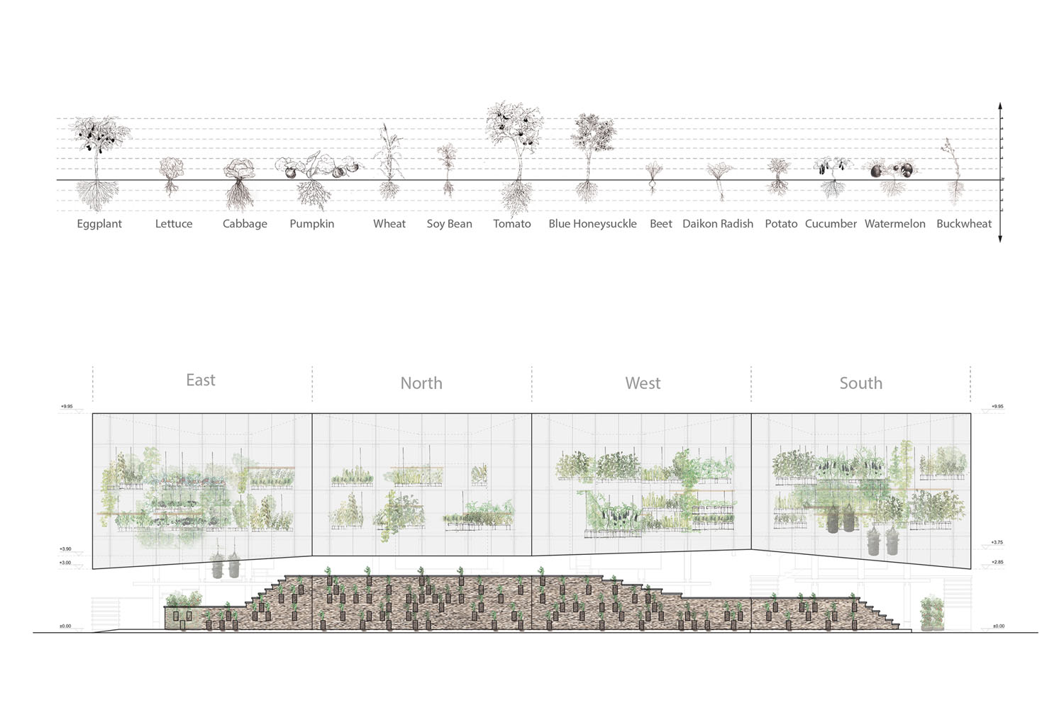 mm_Nest We Grow design by College of Environmental Design UC Berkeley + Kengo Kuma & Associates_24