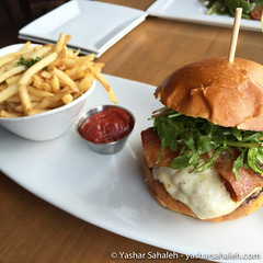 Harvest Burger and Duck Fat Fries