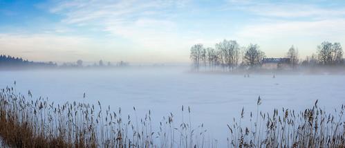 ice fog ledus ziema migla ozolniekuezers