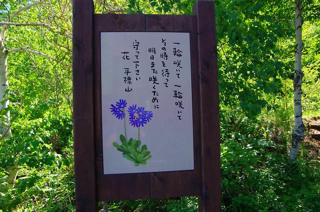 20150607-仙ノ倉山S-0002.jpg
