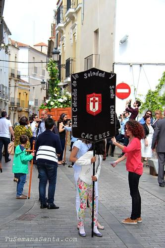 Cruz de Mayo Cofradía Soledad 1ª parte