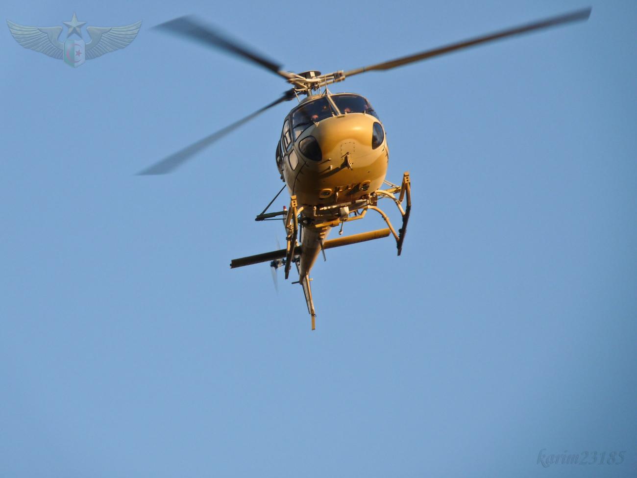 صور مروحيات القوات الجوية الجزائرية Ecureuil/Fennec ] AS-355N2 / AS-555N ] - صفحة 6 27611613675_12246ebe5a_o