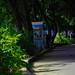 Por los caminos del Parque Mirador Sur en Santo Domingo