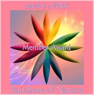 RoN_6Pink_Member