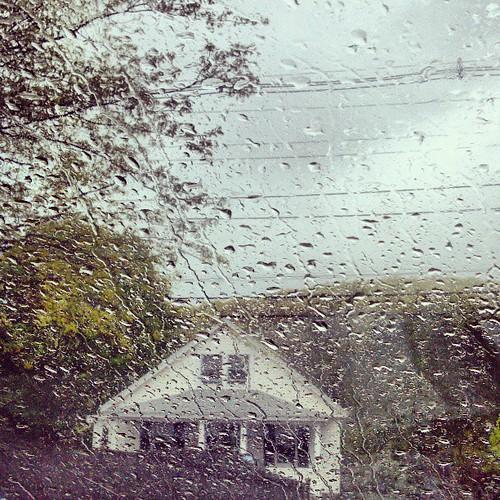 Spring rains.