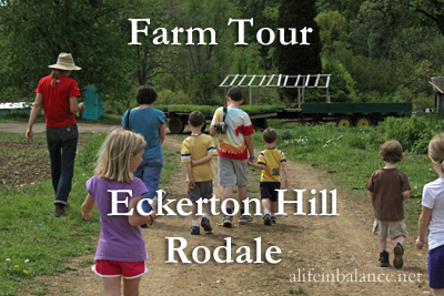 fFarm Tour: Eckerton Hill Farm and Rodale