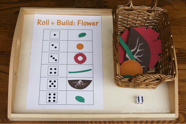 Roll and Build a Flower Activity