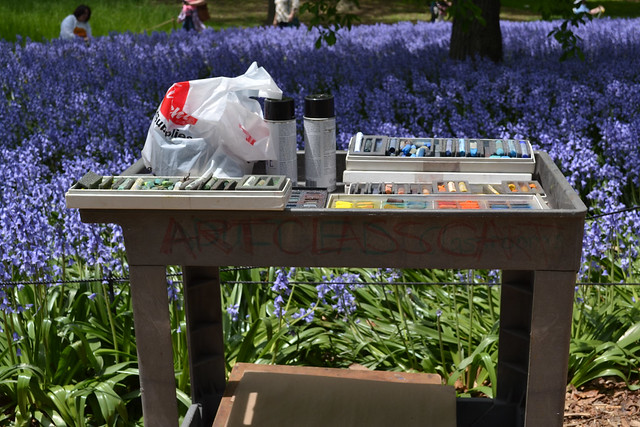 Bluebell Wood at its peak attracts artists to the Garden. Photo by Blanca Begert.