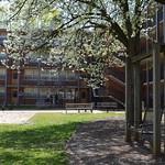 Bragaw Hall