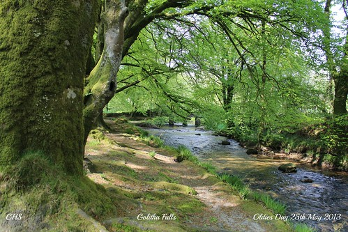 Golitha Falls by Stocker Images