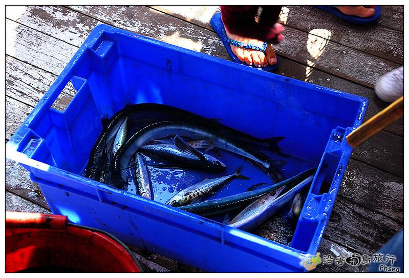 2013元貝休閒漁業_42