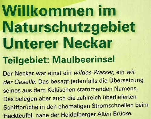 Mannheim Naturschutzgebiet Unterer Neckar Maulbeerinsel