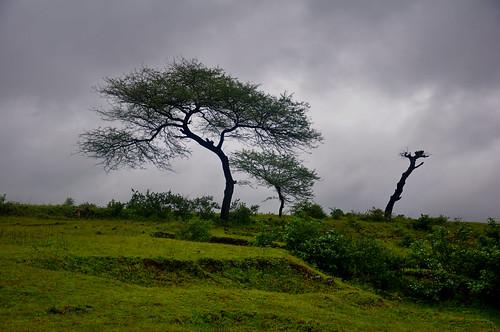 rain day monsoon gujarat saputara mygearandme