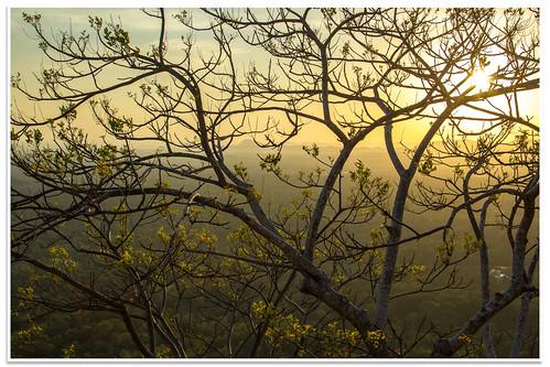 srilanka sigiriya centralprovince