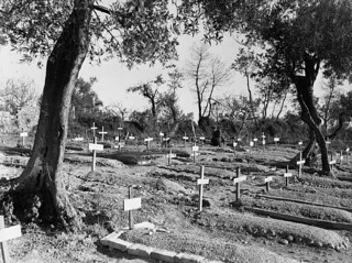 Graves of personnel of the Edmonton Regiment killed in the Battle of Ortona / Sépultures de membres de l'Edmonton Regiment qui ont été tués à la bataille d'Ortona