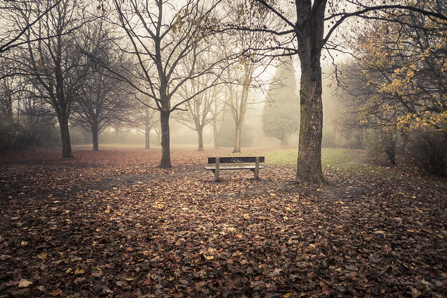 Autumn Fantasy : Mystery Bench