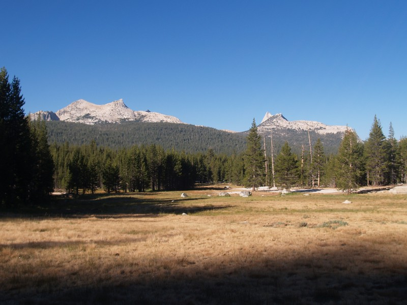Looking across Tuolumne Meadows from the Dog Lake Trail toward Unicorn Peak and Cathedral Peak