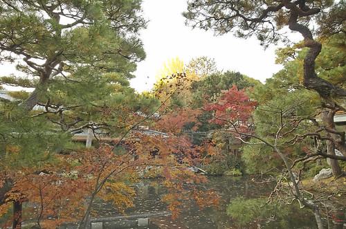 【写真】2013 紅葉 : 白沙村荘/2020-12-28/IMGP3691