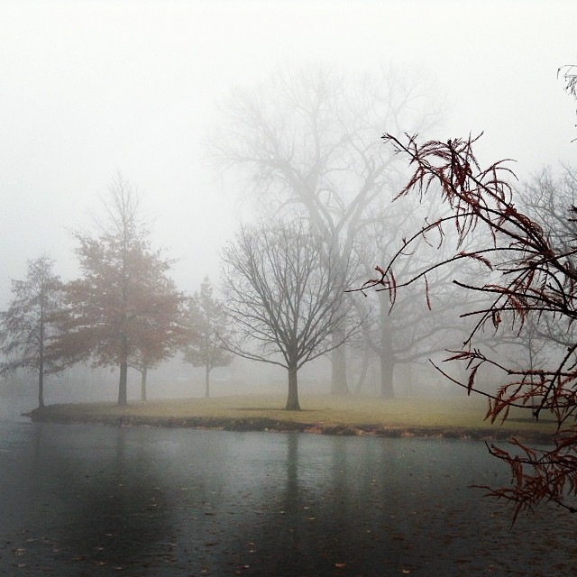 It was a beautiful foggy day today #DeKalb #dekalbil