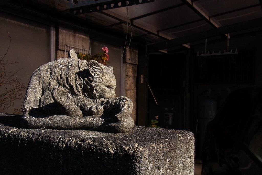 RIMG0699 - 2014-01-02 07-24-51-akigawa