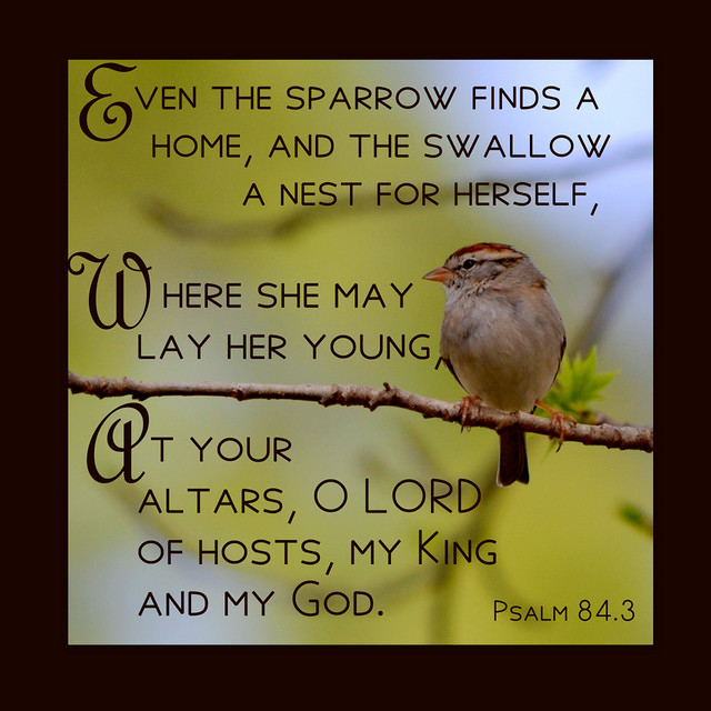 Psalm 84.3