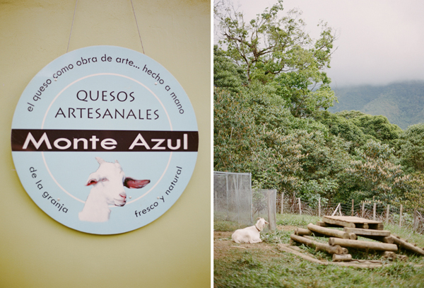 RYALE_CostaRica_MonteAzul-053