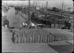 09-11-1947_02650 Mosselzakken in Yerseke