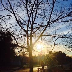 28 January 2015 #sunset #samespotforayear