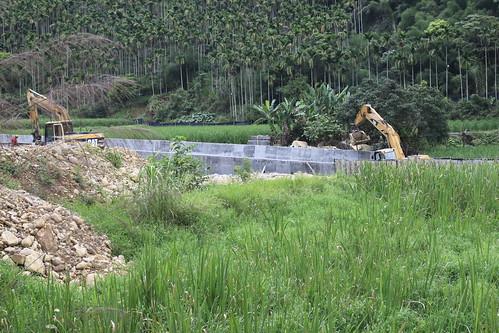 台灣白魚的埔里棲地進行河川整治工程(1)(2014年5月18日,圖片攝影:羅聿)