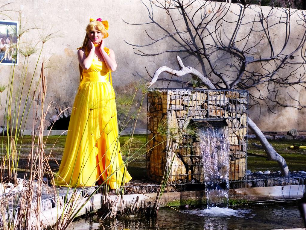related image - Shooting Princess Venus - Parc de Baudouvin - La Valette du Var - 2015-01-18- P1980928