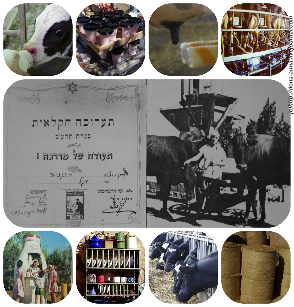 Shavuot-Collage-a