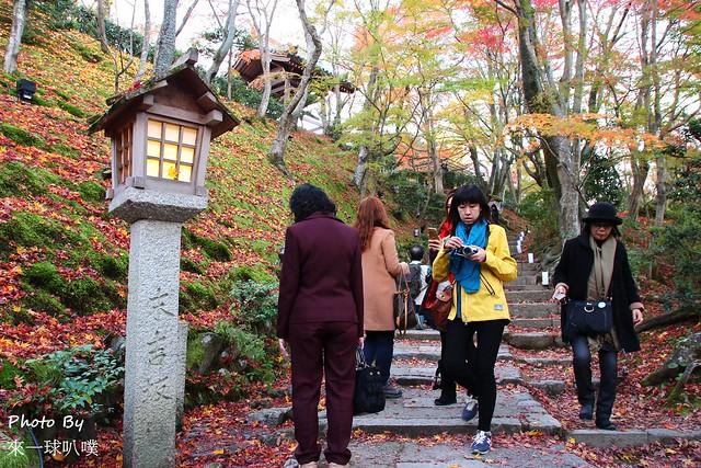 嵐山旅遊景點-常寂光寺12
