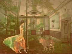 Good evening my friends  ☺☺ #FreeToEdit #photography #room #edit #art #collage #forest #nature #women #jaguar #dream #fantastic #surreal #artwork #freeart #popart #effect #pencilart #pastel #drawing #photodesign #edited #illustration #poster