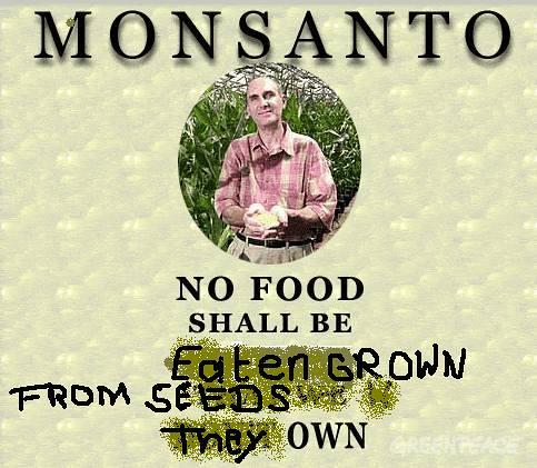 monsanto-no-food-2