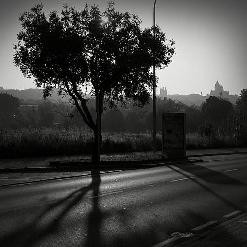 Salamanca desde Tejares al amanecer.