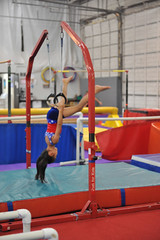 athletics(0.0), jumping(0.0), pole vault(0.0), high jump(0.0), uneven bars(0.0), sports(1.0), gymnastics(1.0), artistic gymnastics(1.0), rings(1.0),