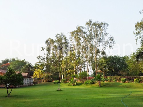 Ashok Country Resort 10 - Main Garden & Dining Lawn
