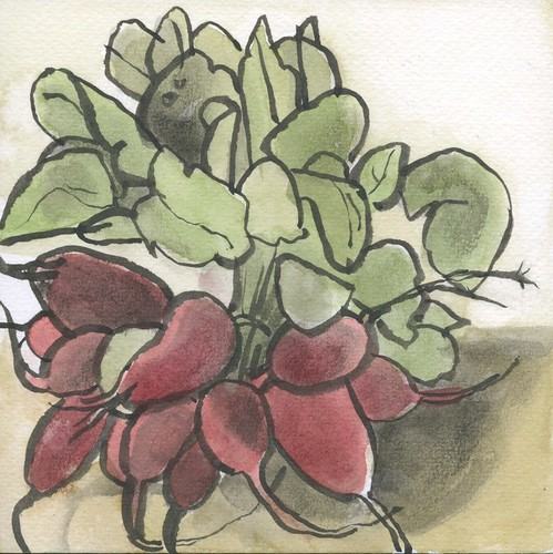 radishes from hindinger farm by Bricoleur's Daughter